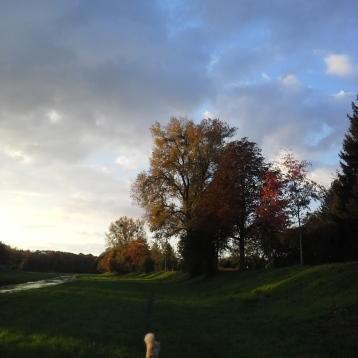 Spaziergang Oktober 2017